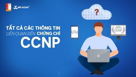 CCNP là gì? Thông tin liên quan đến chứng chỉ CCNP đầy đủ nhất
